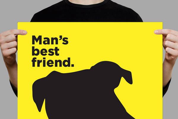 Dog Friendly Brand Campaign