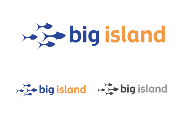 bigisland-1